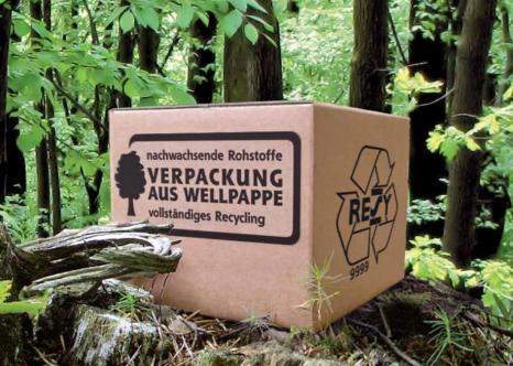 Wellpappe im Wald © vdw