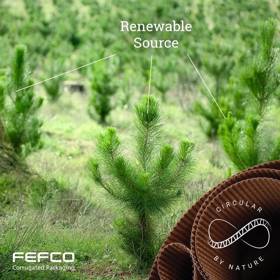 Erneuerbare Ressource © FEFCO